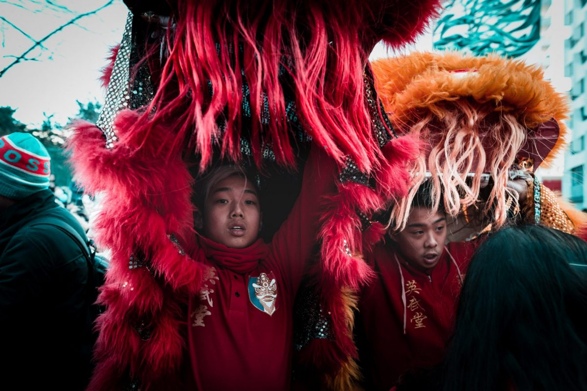 photographie de rue nouvel an chinois défilé paris